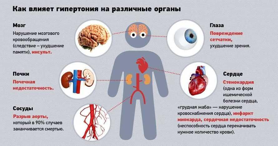 схема влияния гипертонии